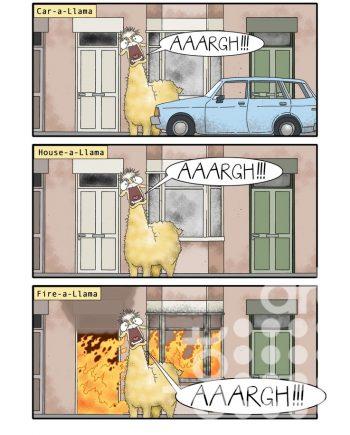 Llama Drama by Tommy Graham