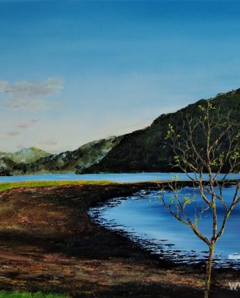 sappling Along Loch Goil By Hazel Thomson