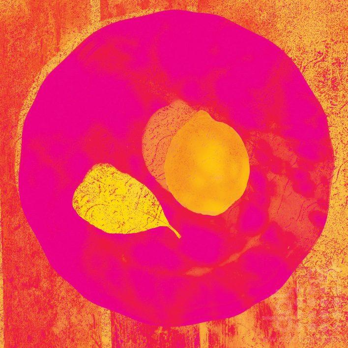hot-pink-lemon-olga-snell