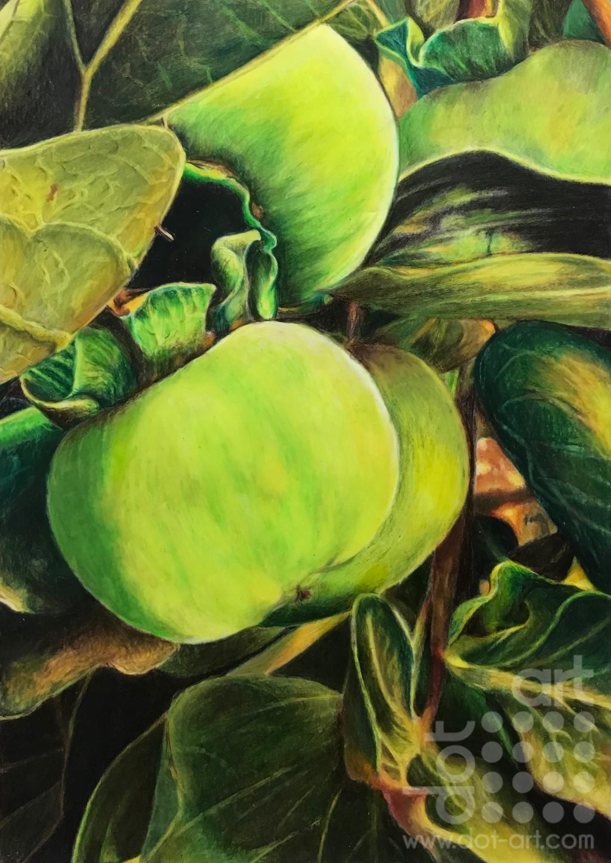 Fifty shades of green-Laleh-Kamalian