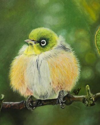 Fluffy-Bird-Laleh Kamalia