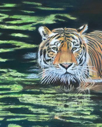 The tiger in the pond-Laleh Kamalian