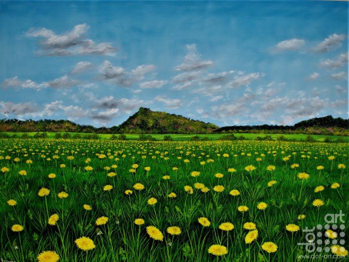 A feild of Golden Dandelions-Hazel-Thompson