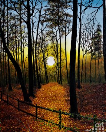 sunset in the forest -hazel-thompson