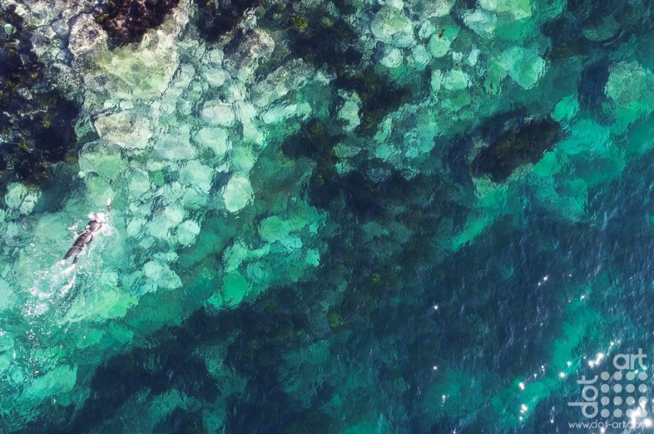 Gordon's Bay – 2.02 -David-Gilligan-WeThreeStore