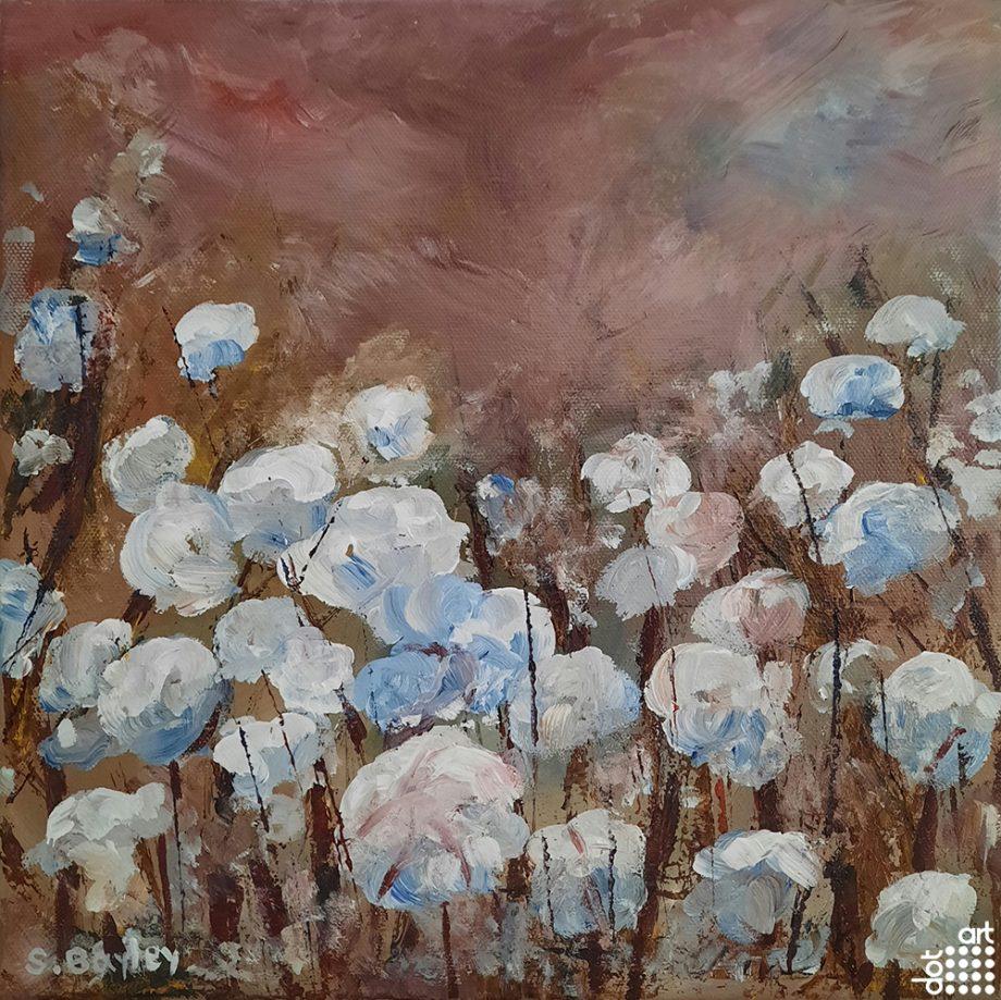 Cotton Fields-Steve-Bayley