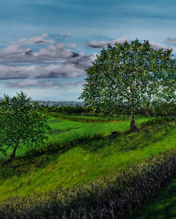 Cheshire Plains Landscape-Hazel-Thompson