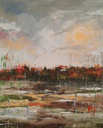 Marshes-Steve-Bayley