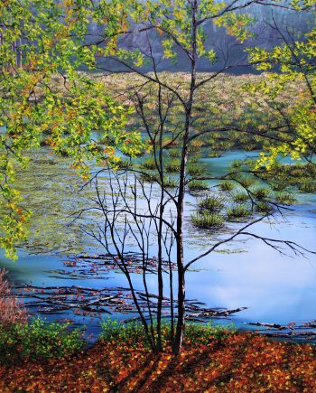 Delamere Moss in Autumn-Hazel-Thompson