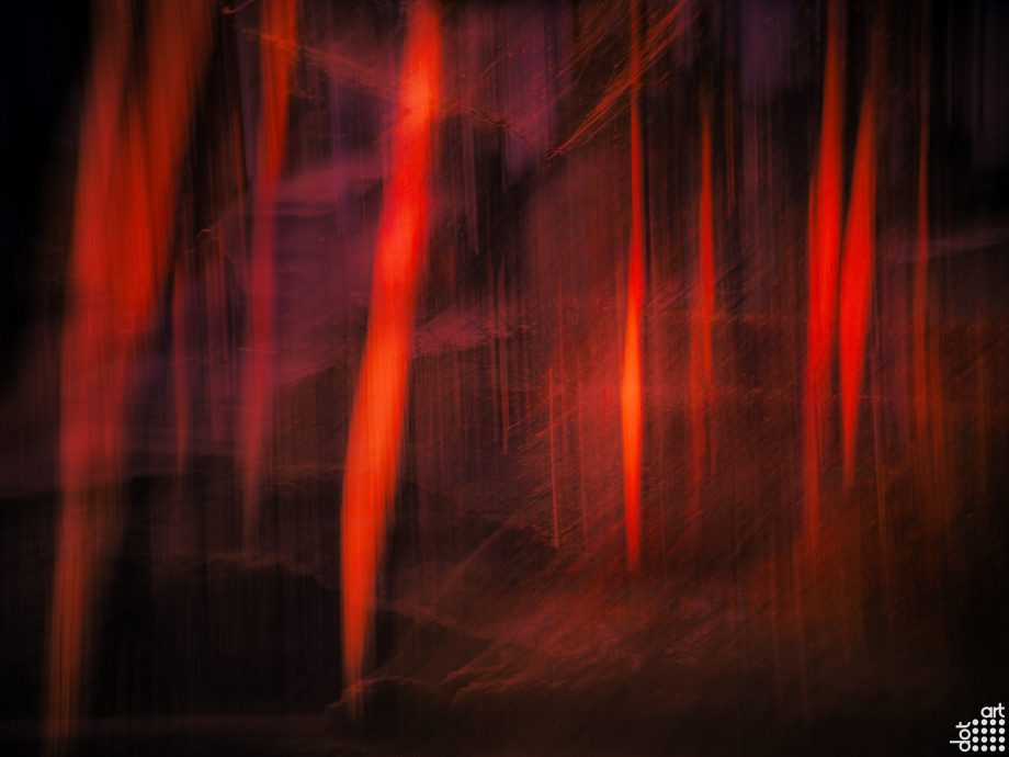 05 And then the forests burned by Mark Reeves
