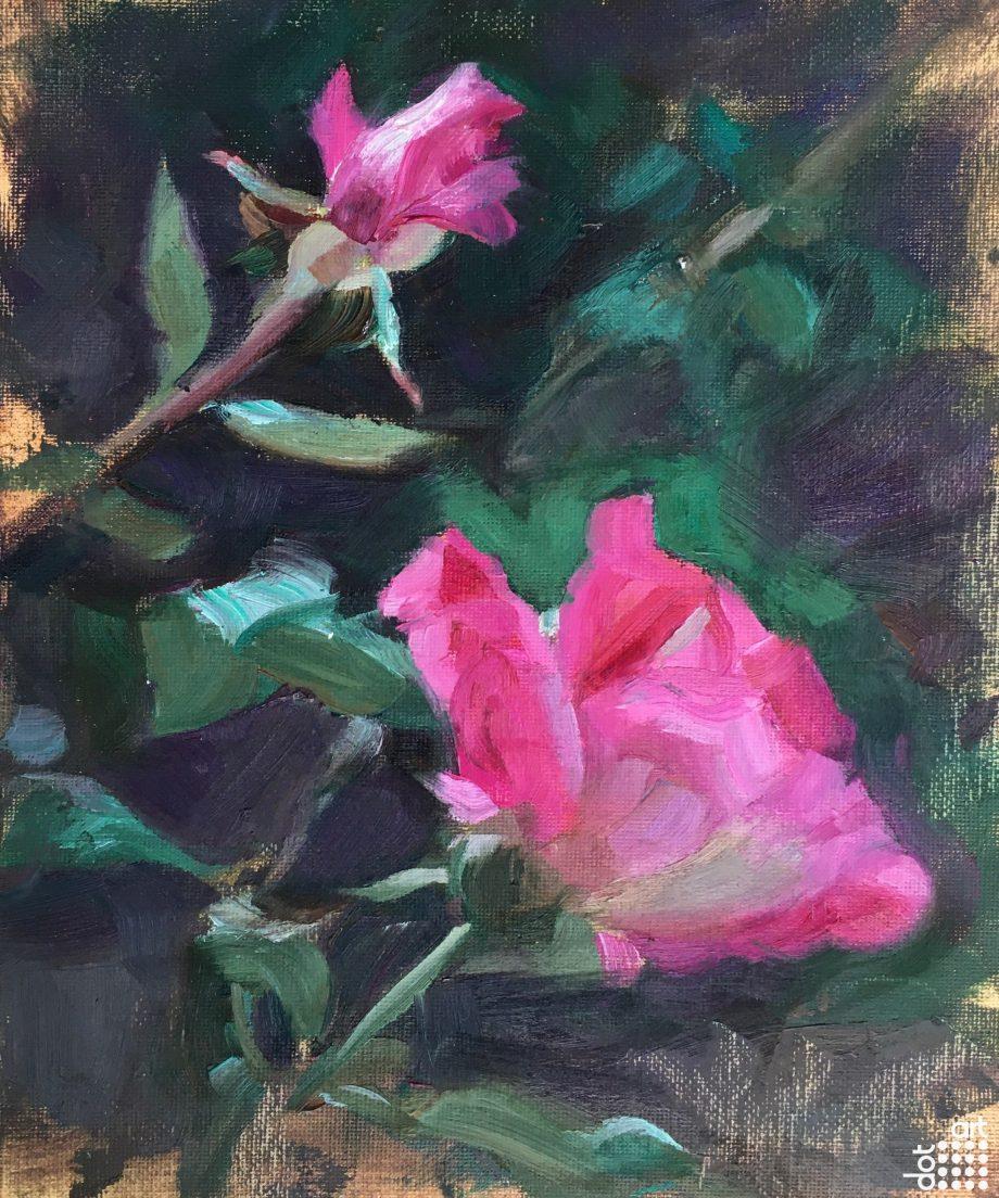 Garden Rose-Jacob-Gourley