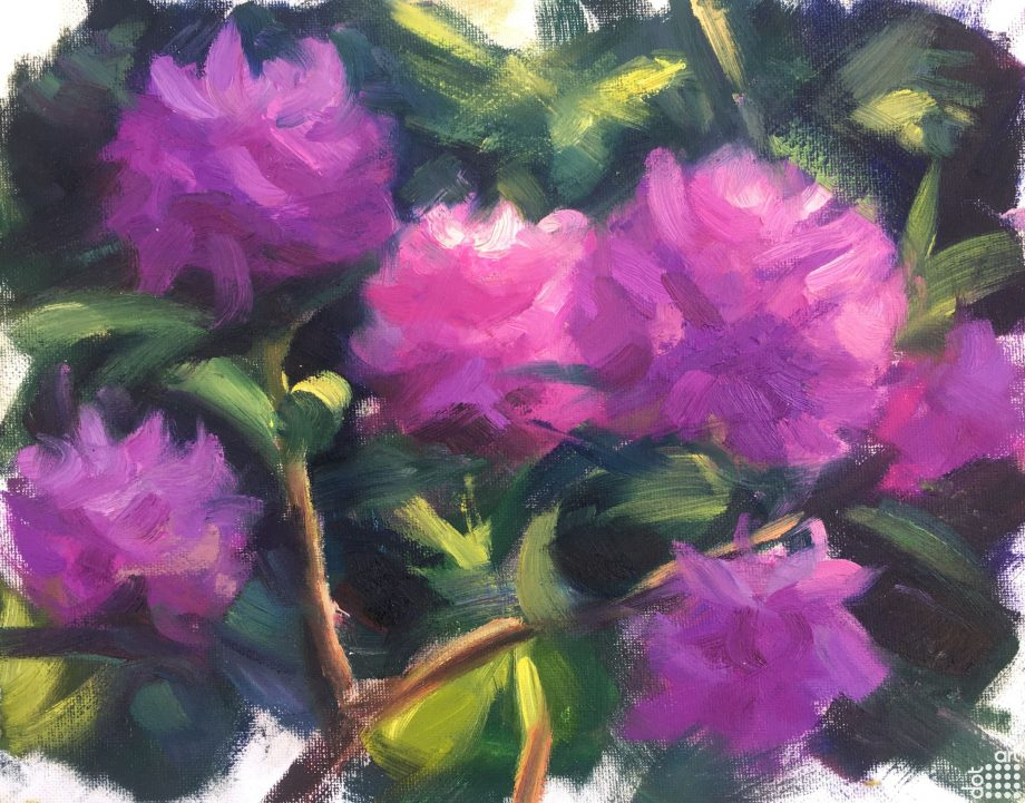 Rhododendrons-Jacob-Gourley
