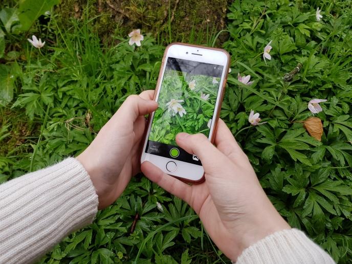 Heavy Gardening - recording wildlife