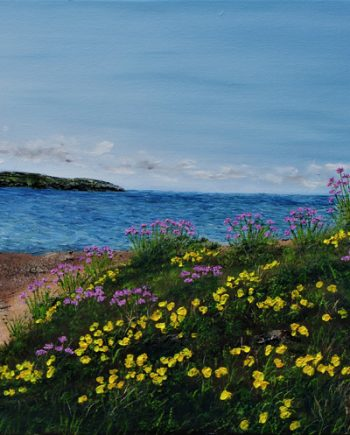 sea thirft and gorse on hilbre Island - hazelthompson