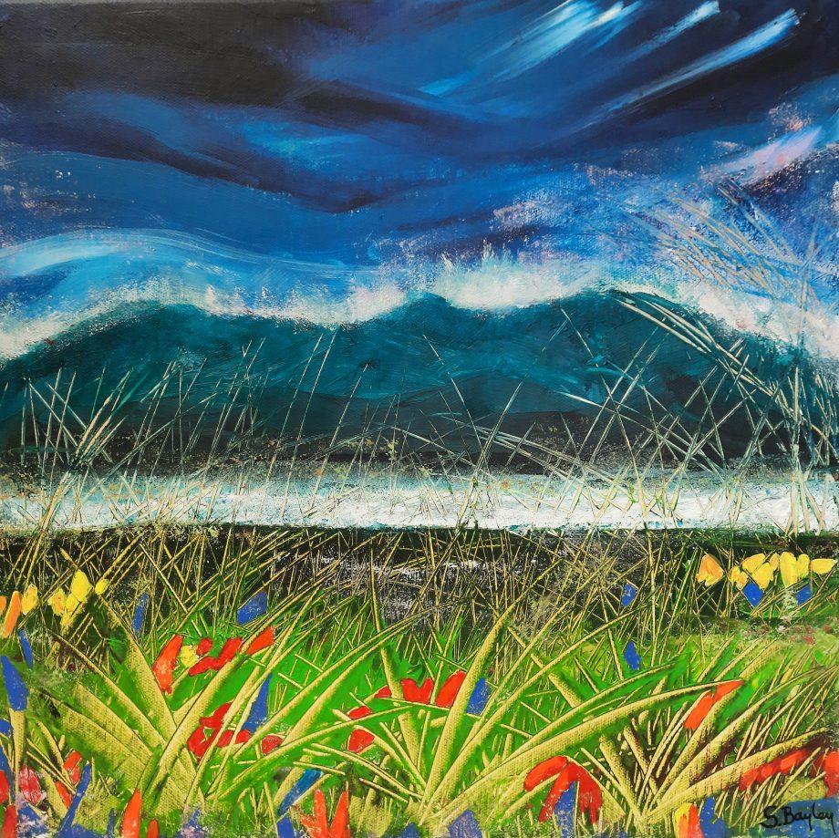 Grasses 2 (Camphill)-Steve-Bayley
