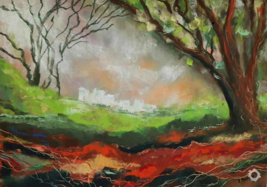 8 Sandstone Trail 2 (Frodsham Hill)-Steve-Bayley