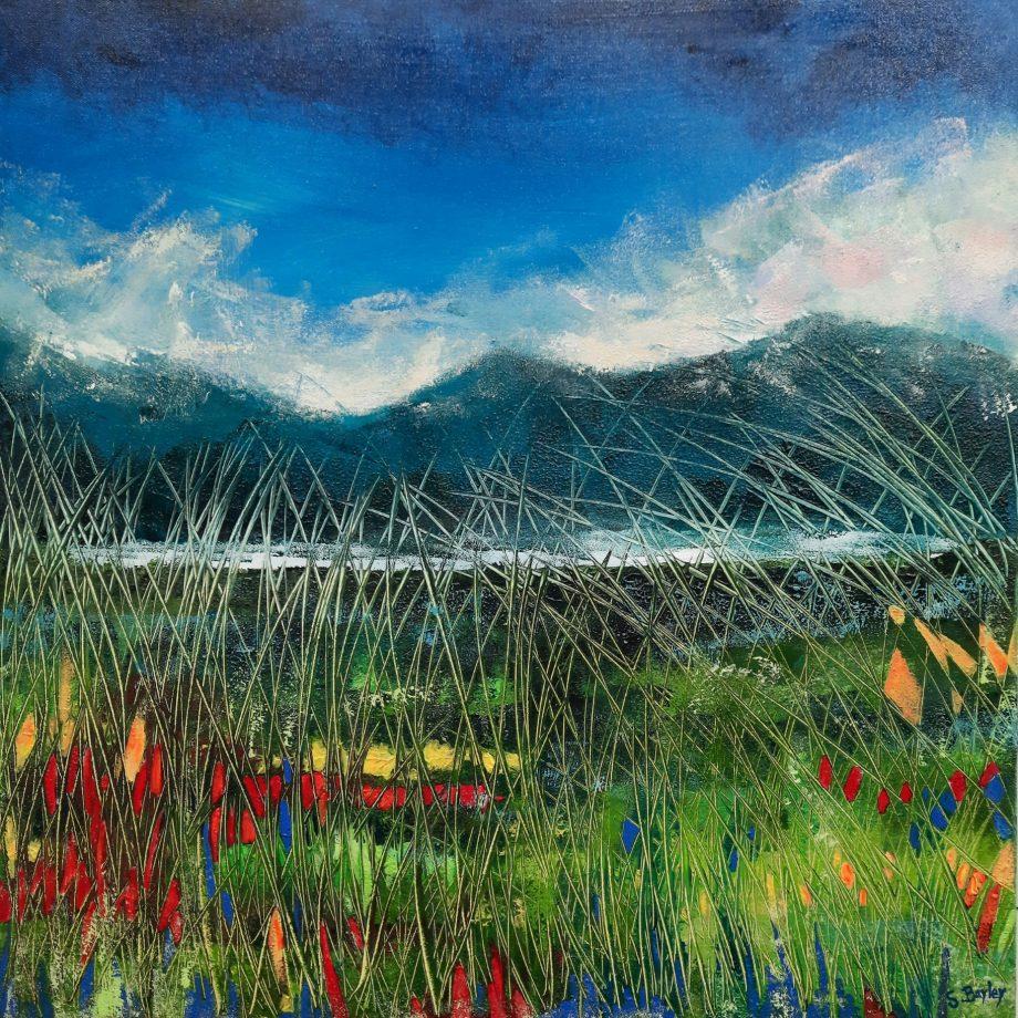 Grasses 3 (Camphill)-Steve-Bayley