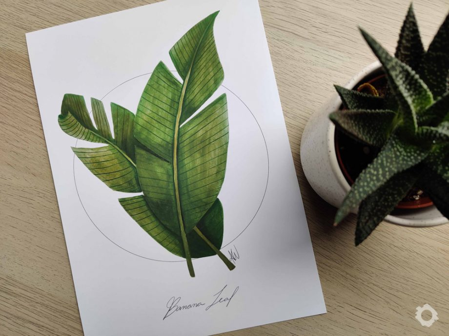 Banana Leaf – Anne Wiziack