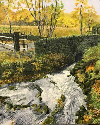 Swollen Stream - Rob Edmonson