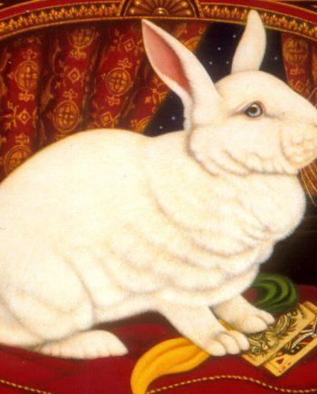 The Magician's Rabbit - Frances Broomfield